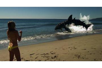 「ビーチ・シャーク」の場面写真6 DVD 洋画